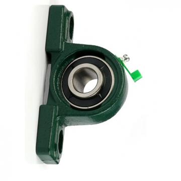 Insert Ball Bearing with Plastic Pillow Blocks for Chemical/Food Industries Ucf204 Ucf205 Ucf207 Ucf208 Ucf209 Ucf210